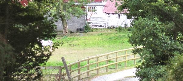 Entrance-of-Cuckoo-Mill-2