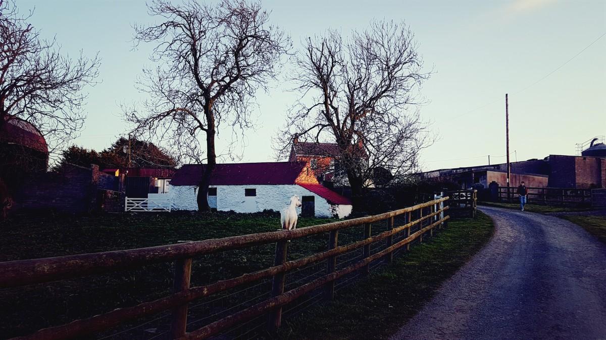 Lane into Cuckoo Mill